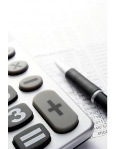 2015 metų darbo užmokesčio skaičiuoklė